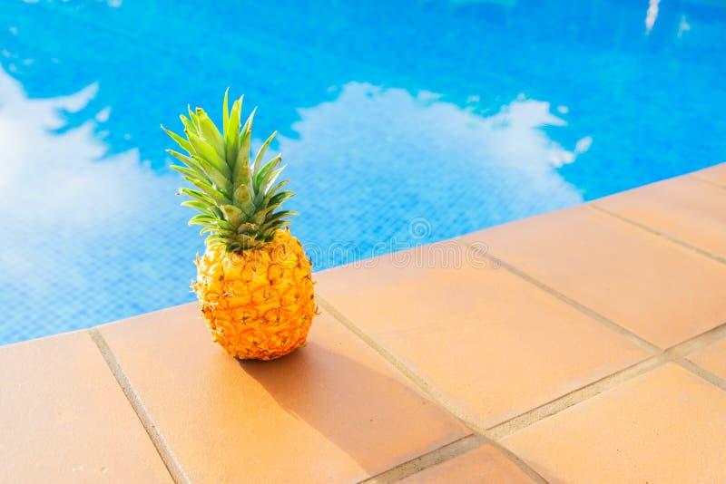 Near pöl för ananas arkivbild
