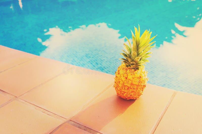 Near pöl för ananas royaltyfri foto