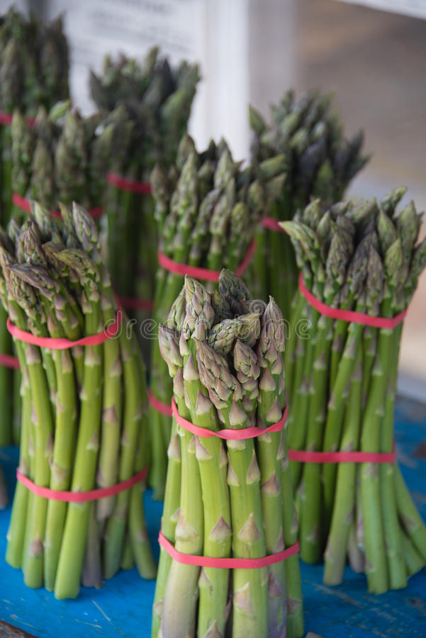 Neat display of bunches of asparagus royalty free stock images