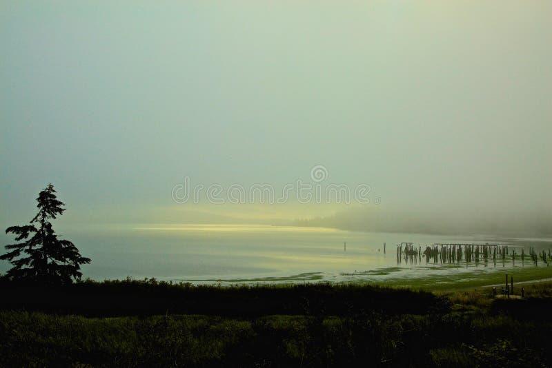 Nebbia Anacortes Washington fotografie stock libere da diritti