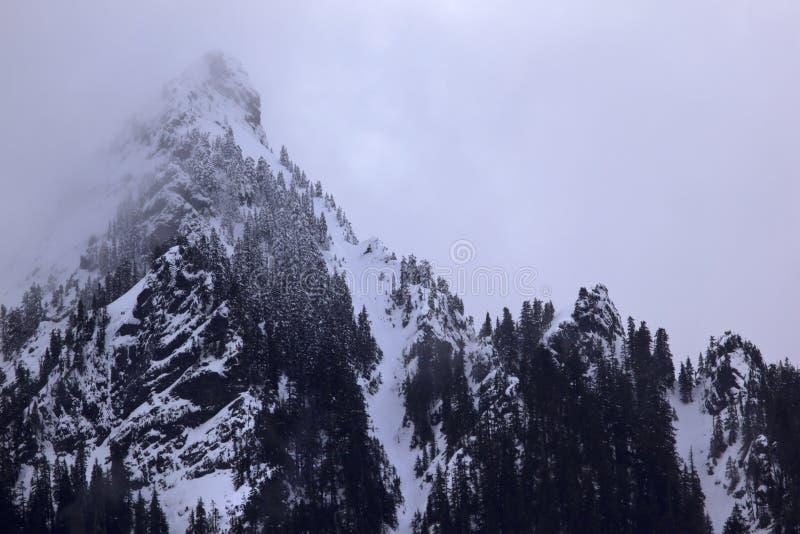 Nebbia del picco di montagna della neve, passaggio Washington di Snoqualme immagine stock