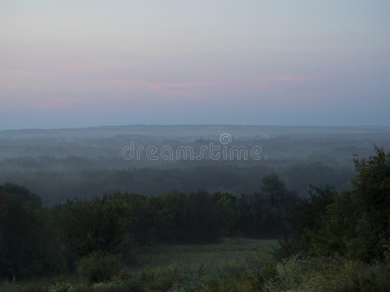 Nebbia della foto sopra la foresta theearly nella mattina fotografia stock