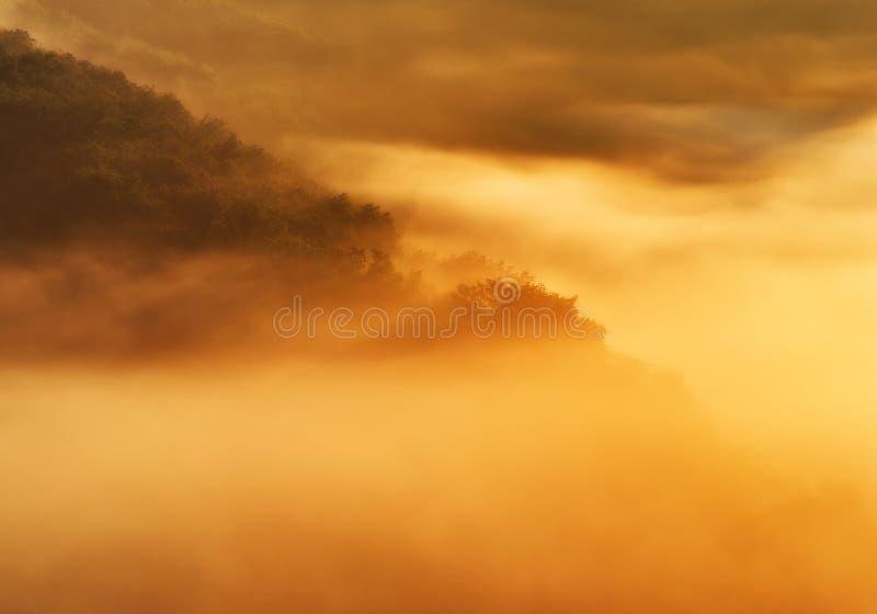 Nebbia della primavera sopra il canyon del fiume fotografia stock libera da diritti