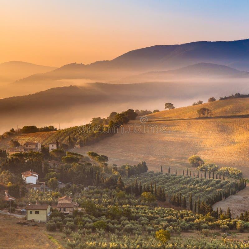 Nebbia di mattina sopra il paesaggio della Toscana, Italia fotografie stock
