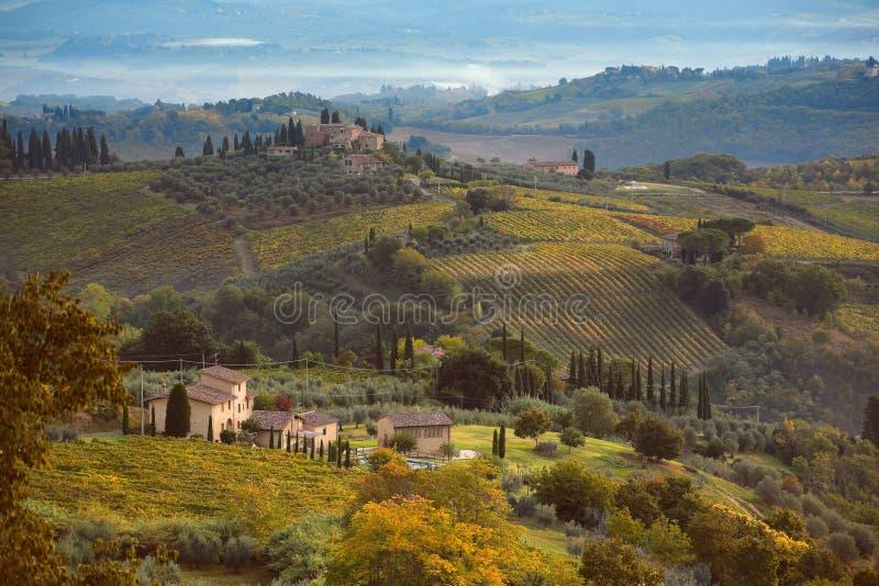 Nebbia di mattina sopra le colline della Toscana immagini stock libere da diritti