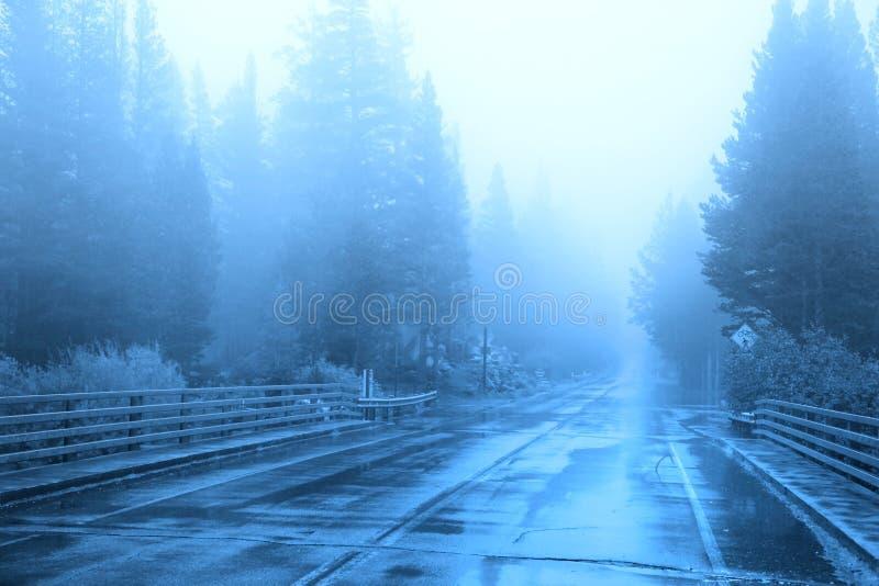 Nebbia di mattina sulla strada immagini stock libere da diritti