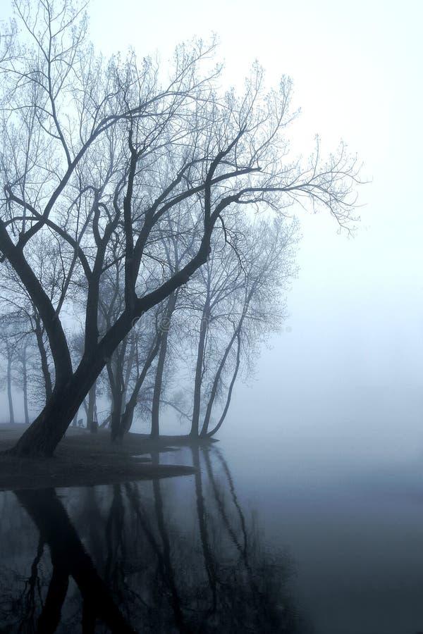 Nebbia di Missippi fotografie stock