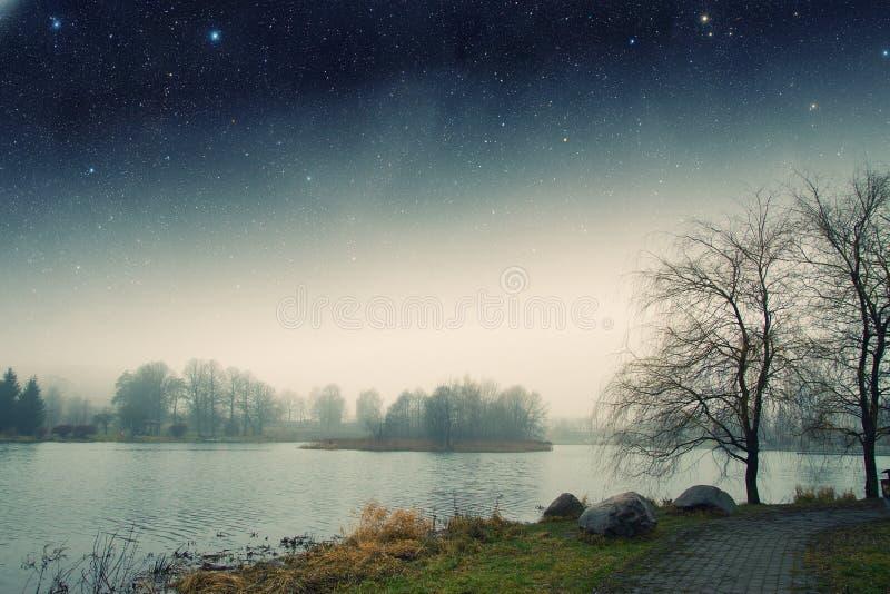 Nebbia di notte immagini stock