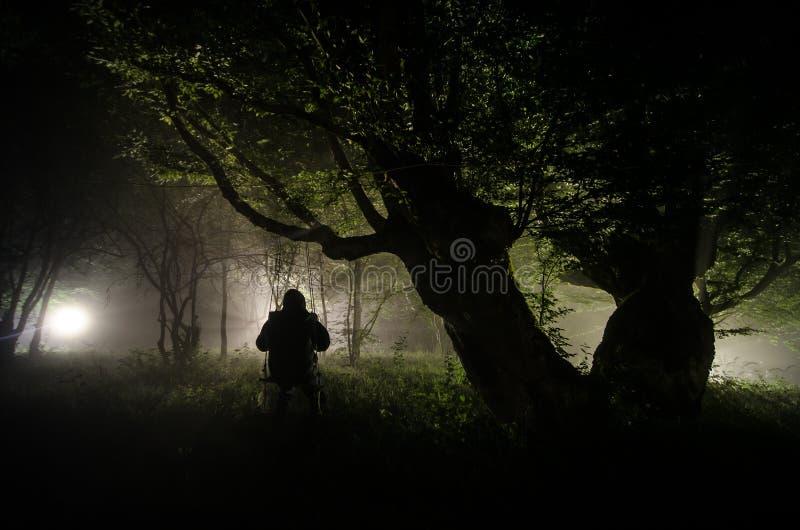 Nebbia di notte nel villaggio mysterious Accendere oscillazione vicino all'albero nell'iarda La luce dalla parte degli alberi Ni  immagine stock
