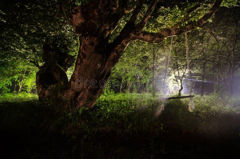 Nebbia di notte nel villaggio mysterious Luce della luna Accendere oscillazione vicino all'albero nell'iarda La luce dalla parte  fotografia stock