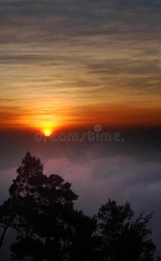 Nebbia in Dieng Plateu, Java centrale, Indonesia fotografie stock