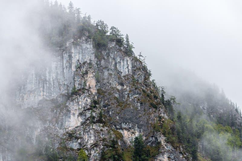 Nebbia dopo il giorno piovoso in montagne fotografia stock
