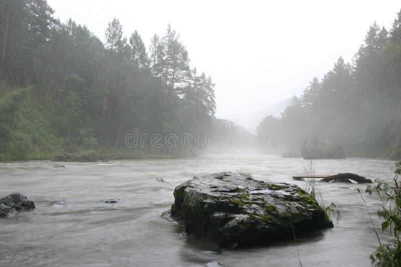 Nebbia e fiume fotografia stock libera da diritti