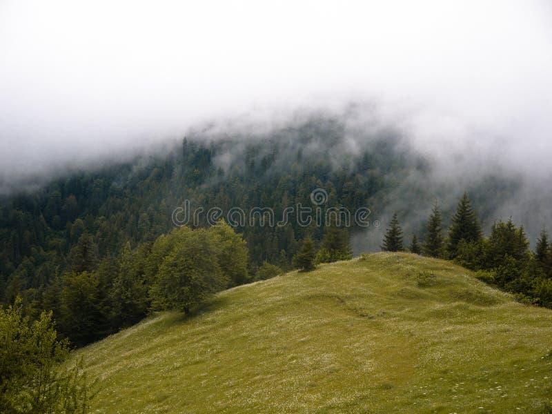 nebbia e nuvola nella montagna fotografia stock libera da diritti