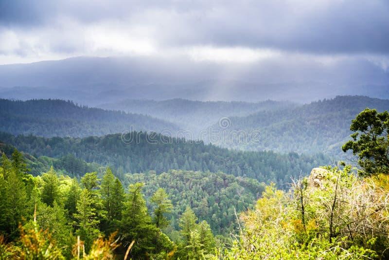 Nebbia e nuvole di tempesta che coprono le colline verdi e le valli delle montagne di Santa Cruz immagini stock
