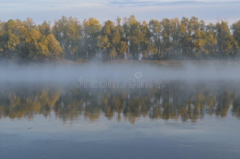 Nebbia e riflessione di mattina immagini stock libere da diritti
