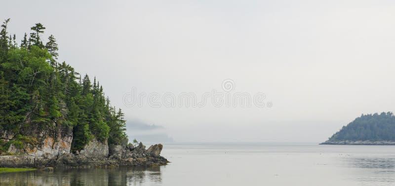 Nebbia ed isole immagine stock