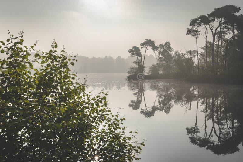 Nebbia nebbiosa di mattina sopra il lago Luce solare che viene attraverso la nebbia Zonsopkomst sopra meer in en Vennen di Oister fotografia stock libera da diritti