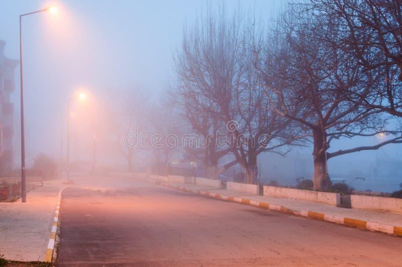 Nebbia pesante alla sera nella regione di Marmara - Turchia fotografia stock libera da diritti