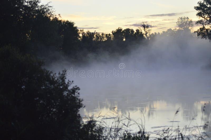 Nebbia prima dell'alba su un lago della foresta immagine stock libera da diritti
