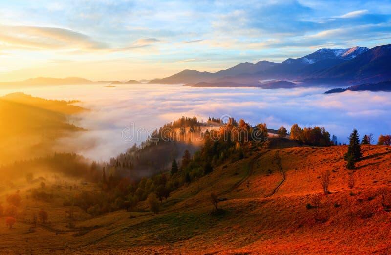 Nebbia spessa, coperta la valle, dietro cui colline della montagna di aumento fotografia stock libera da diritti