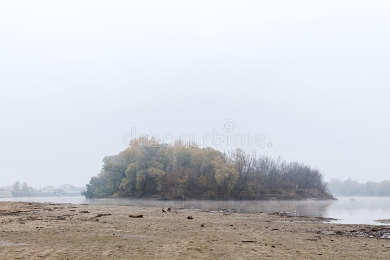Nebbia spessa sulla banca del fiume accanto alla foresta immagini stock libere da diritti