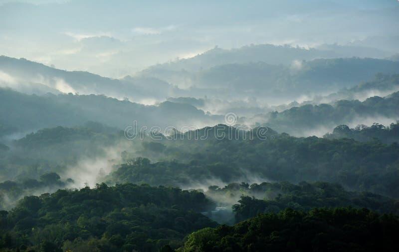 Nebbia sulla montagna immagini stock