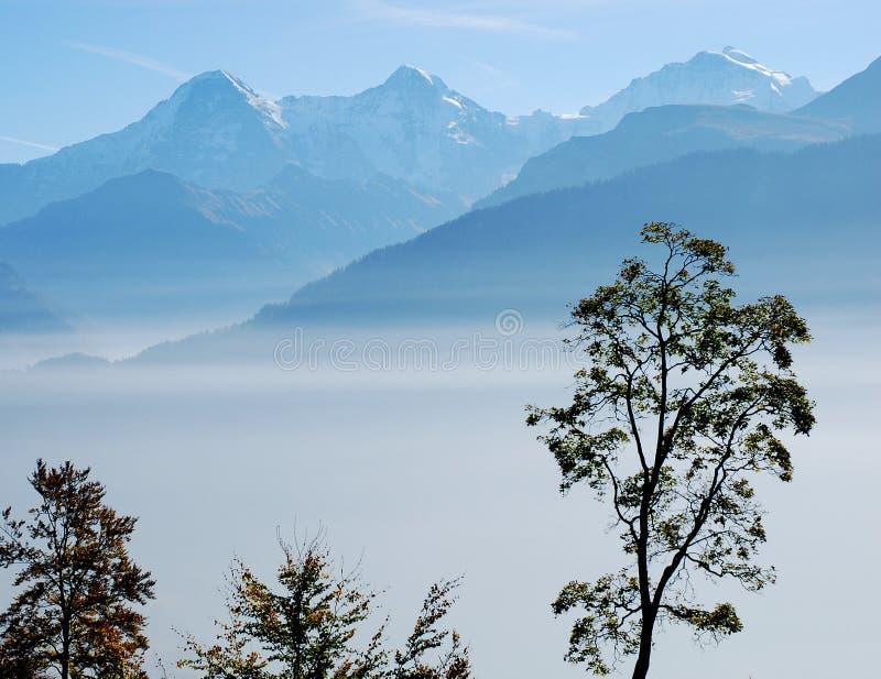 Nebbia Svizzera di Eiger Jungfrau della montagna fotografia stock
