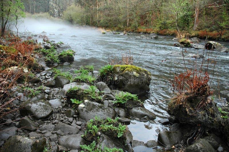 Nebel über der Flusskurve lizenzfreies stockbild