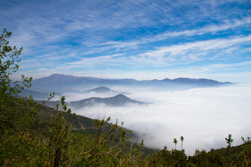 Nebel über La Campana National Park, Chile lizenzfreies stockfoto
