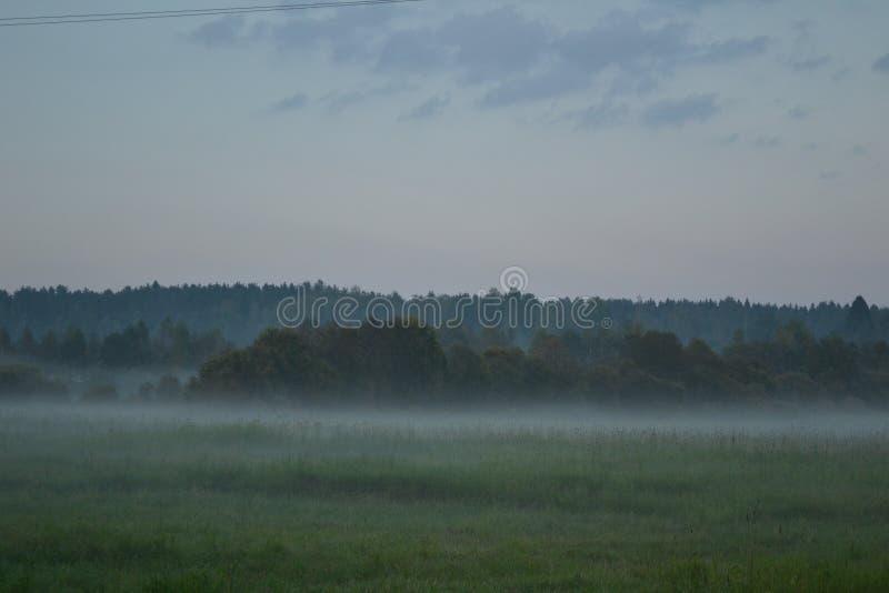 nebel stockfotos