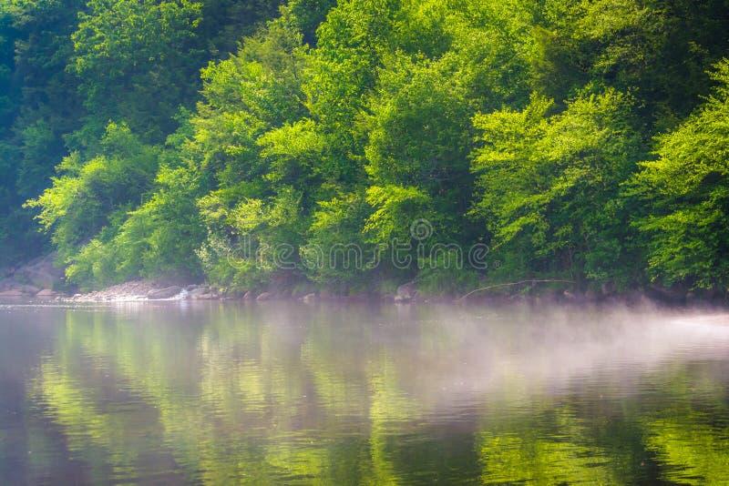 Nebel auf dem Lehigh-Fluss im Lehigh-Schlucht-Nationalpark, Pennsylvania stockbilder