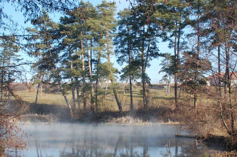 Nebel auf dem Wasser stockbilder