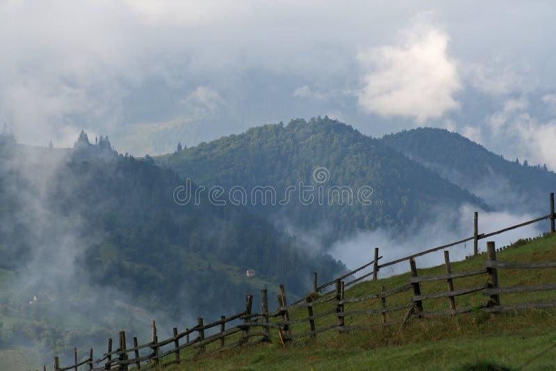 Nebel auf den gr?nen Steigungen der Berge in den Karpaten lizenzfreie stockbilder