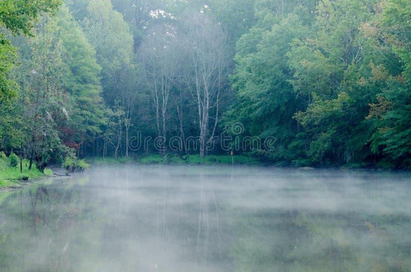 Nebel auf Sumpf-Teich stockbild
