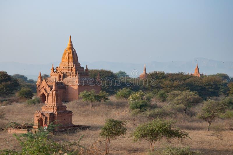 Nebel in Bagan stockbilder