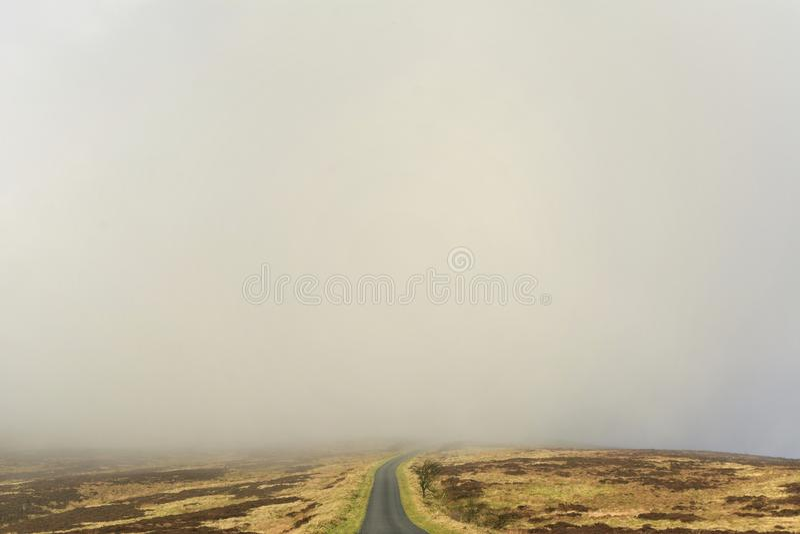 Nebel-Bank auf Heidemoor stockfotos