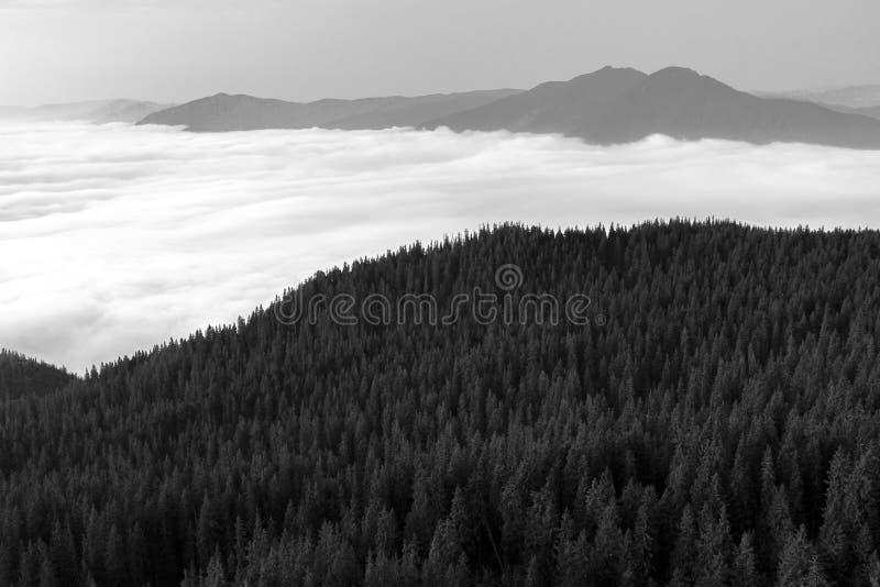 Nebel in den Tälern der Berge lizenzfreie stockfotografie