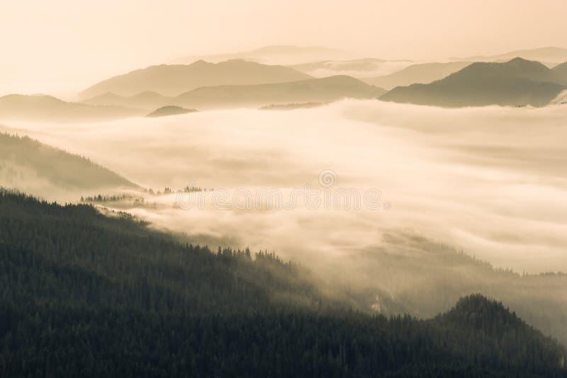 Nebel in den Tälern der Berge Panaramic Ansicht lizenzfreies stockfoto