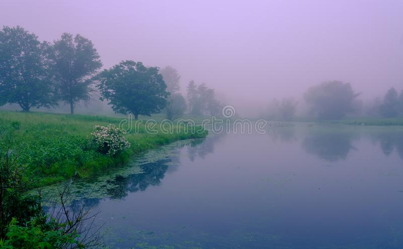 Nebel des frühen Morgens auf dem See Nebelhafter Teich mit Wasserreflexionen Verlassener Platz, schöner Parkblick stockfotografie