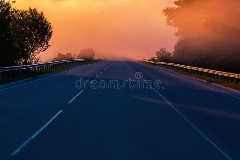 Nebel frühen Morgens Dence im Wold an der Sommerlandstraße nahe Fluss mit Geländern lizenzfreie stockbilder