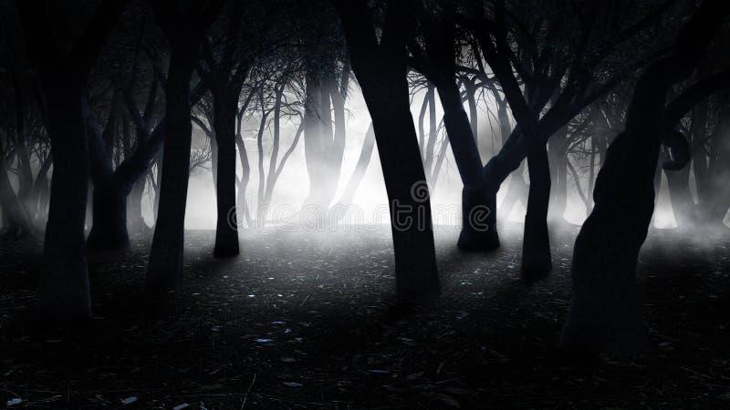 Nebel im alten Wald stock abbildung