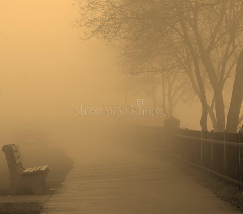 Nebel und Bank lizenzfreie stockfotografie