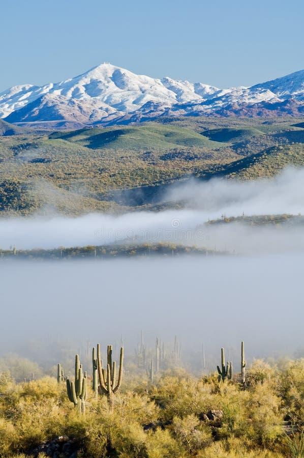 Nebel und Snowy-Spitzen stockfoto