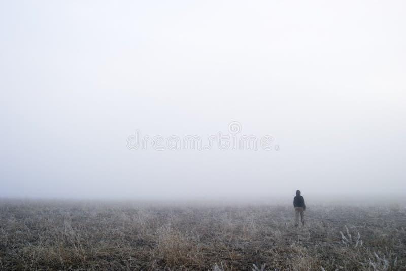 Nebel-Weg lizenzfreie stockbilder