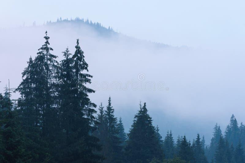 Nebelhafte Gebirgslandschaft stockbild