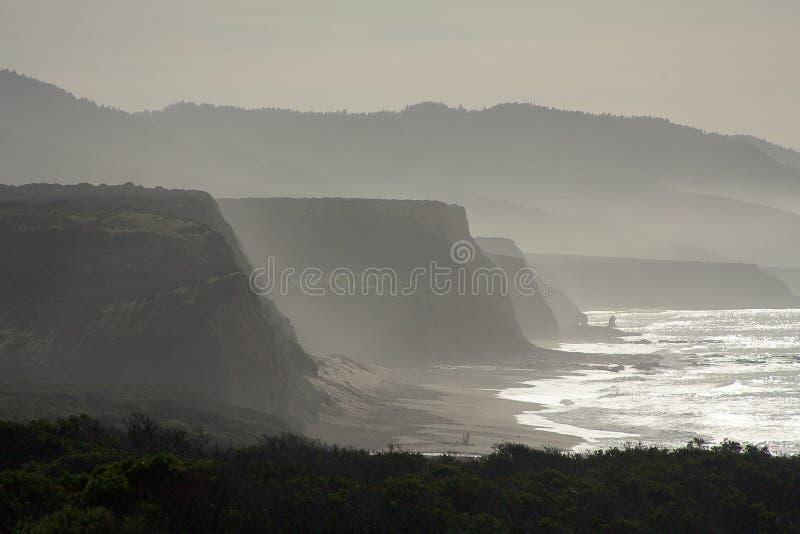 Nebelhafte Küstenklippen stockbild