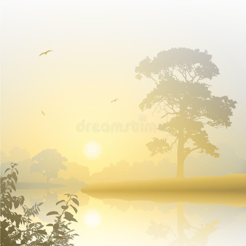 Nebelhafte Landschaft lizenzfreie abbildung