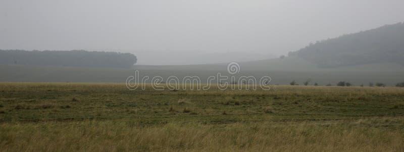 Nebelhafte Landschaft mit Weide, Holz und Lite-Hügeln lizenzfreie stockfotografie