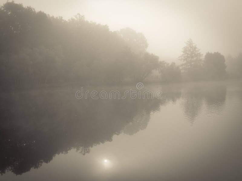 Nebelhafte Morgen-Leuchte stockfotos